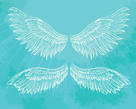 hand drawn wings: hand drawn wings. Vintage design element on blue background