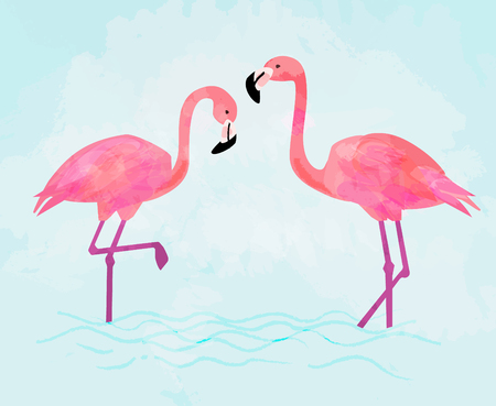 Pink Flamingo couple standing in pond. Colorful vector illustration  イラスト・ベクター素材