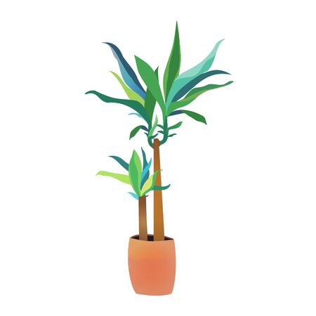 Green dracaena home plant isolated on white background. Bright interior flower pot vector illustration Vectores