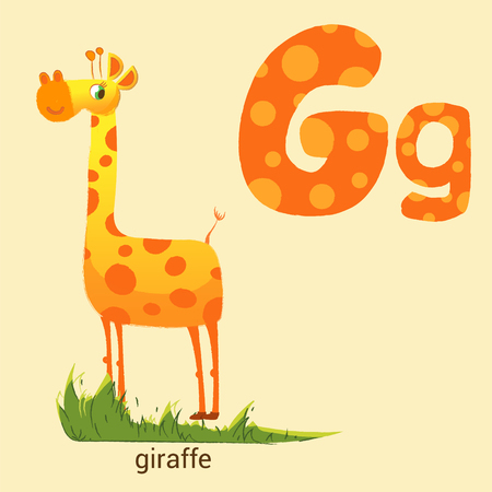 g giraffe: Letter G with Cute Giraffe in vector Illustration