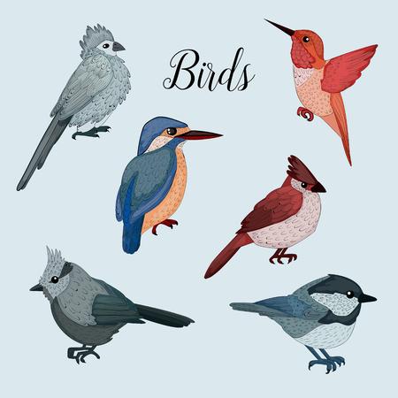 ornithological: Birds Set in Hand Drawn Style. Vector illustration