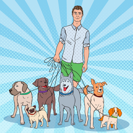 Pop Art Dog Walker. Young Man Walking with many Dogs. Vector illustration