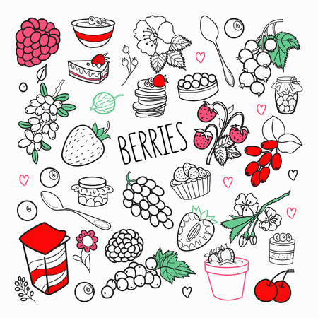 Berries Hand Drawn Doodle. Outline Berry Set with Grape, Cherry and Strawberry. Vector illustration Çizim