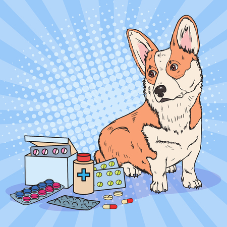Pop art corgi dog with medication pills and tablets. Pet health care.