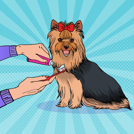 Pop art female hand holding toothbrush with toothpaste. Brushing teeth Yorkshire terrier. Pet health care.