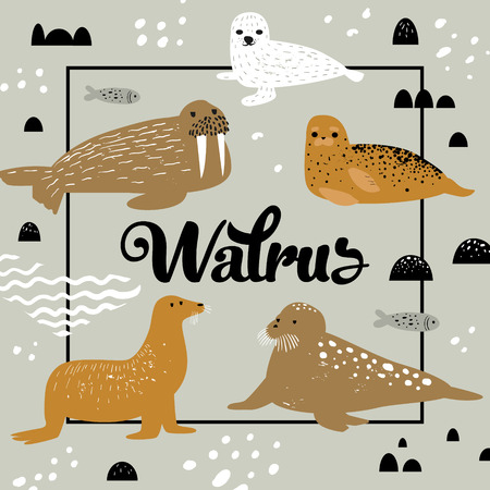 Childish Design with Seal and Walrus.
