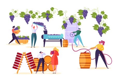 Winery Factory. Wine Production Process Set. Winemaker Character Crushing Fermentation Bottling Red Grape Alcohol Drink to Wooden Barrel with Old Vineyard Technology Flat Cartoon Vector Illustration
