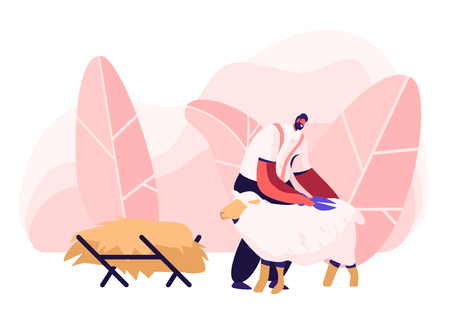 Mature Farmer Shearing Sheep for Wool in Barn. Sheepshearer Character at Working Process on Farm. Shearer Man Removing Sheep Wool. Ewe Having Fleece Sheared Off. Cartoon Flat Vector Illustration Ilustração