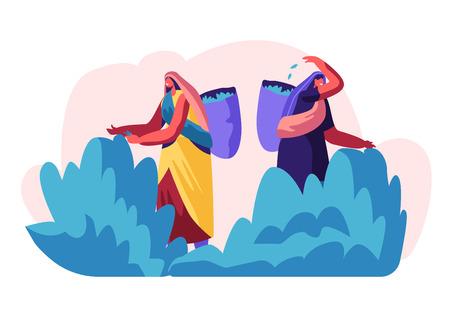 Personaggi femminili di raccoglitori di tè in abiti tradizionali indiani che raccolgono foglie fresche di tè nel cesto sul retro alla piantagione. Occupazione estiva di lavoro delle lavoratrici. Cartoon piatto illustrazione vettoriale Vettoriali