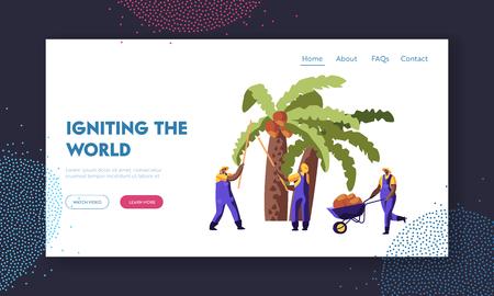 Herstellung von Palmöl. Arbeiter sammeln Kokosnüsse von Palmen, Saisonarbeit, Arbeiter, die Ernte auf afrikanischen oder asiatischen Plantagen-Website-Landing Page, Webseite. Cartoon-flache Vektor-Illustration, Banner Vektorgrafik