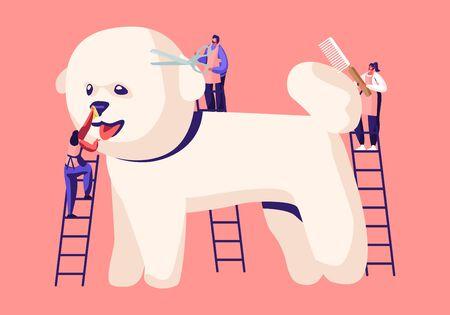 Winzige Charaktere auf Leitern Pflege von niedlichen Pudelwelpen im Groomer-Salon, Wolle schneiden, mit Kamm bürsten, Haustierfriseursalon, Styling- und Pflegegeschäft, Zoohandlung für Hunde Cartoon flache Vektorillustration Vektorgrafik