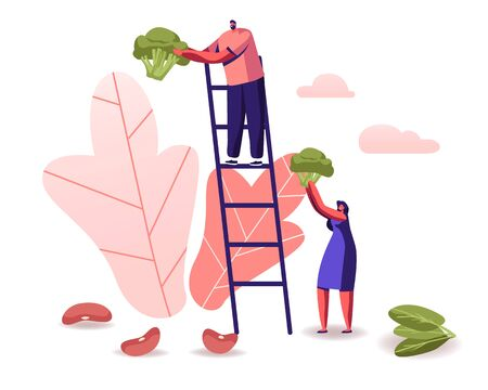 Man Stand on Ladder, Woman Holding Huge Broccoli Piece, Beans and Spinach Scattered around. Healthy Nutrition  イラスト・ベクター素材