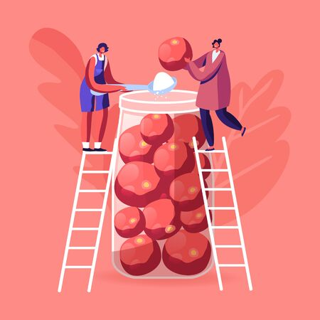 Tiny Female Characters Stand on Ladders Put Ripe Tomatoes and Salt into Huge Glass Jar. Women Cooking Fermented Homemade Food Prepare Purveyance for Winter Time. Cartoon People Vector Illustration