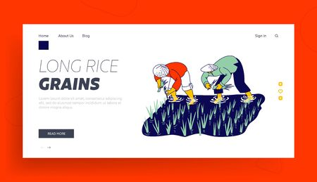 Workers in Thai or China Working on Field Landing Page Template. Farmers Characters Soaked with Water and Mud Planting, Grow and Collecting Rice in Rainy Season. Linear People Vector Illustration