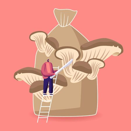 Tiny Male Character Stand on Ladder with Knife in Hands Prepare to Cut Ripe Mushrooms Growing on Huge Sack Vektorgrafik