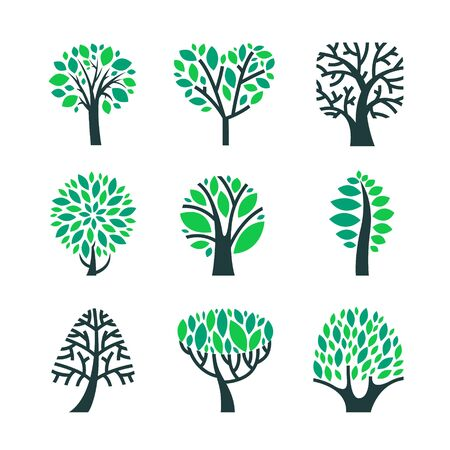Trees with Green Leaves on Branches Set Isolated on White Background. Summer or Spring Season Foliar Plants