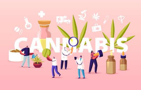 Cannabis Recipe for Personal Use Concept. Scientist Characters Growing Medical Cannabis and Preparing Homeopathic Drugs Vektorové ilustrace