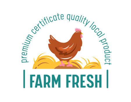 Fresh Farm Local Products, Farmer Market Food Banner with Chicken. Ecological Natural Organic Production Advertising 向量圖像