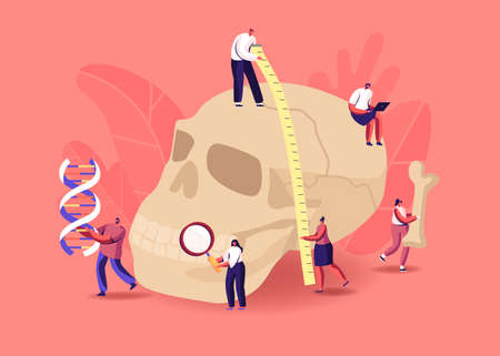 Anthropology Studying. Tiny Characters Measuring Huge Human Skull, Carry Bones and Dna Spiral. Paleolithic Research Ilustração