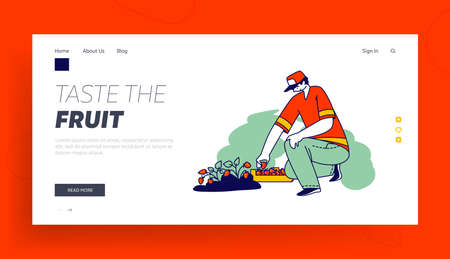 Immigrant Character Harvesting Strawberry Landing Page Template. Strawberry Worker in Uniform Picking Fresh Berries