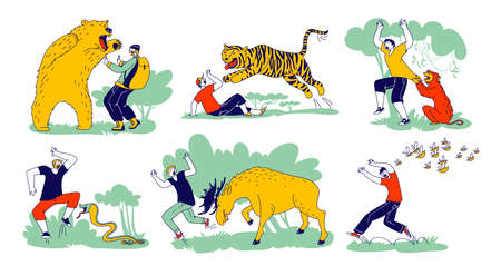Set of Characters is Attacked with Wild Animals Bear, Tiger and Ape with Moose and Bees. Danger at Outdoor Recreation
