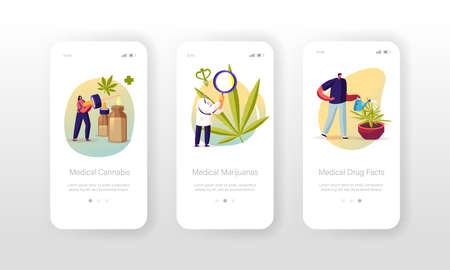 Medical Cannabis Mobile App Page Onboard Screen Template. Tiny Scientists Growing and Preparing Medicine of Marijuana