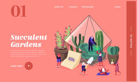 Tiny Characters Grow Cacti and Succulents in Pots at Home Landing Page Template. Gardening, People Planting Hobby