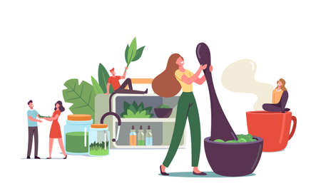Traditional Medicine. Scientist or Doctors Characters Make Drugs of Medical Herbs and Plants, Preparing Ajurvedic Remedy Stock Illustratie
