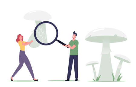 Tiny Male and Female Mushroomer Characters Learning Poisonous Mushroom with Huge Magnifying Glass. People Study Plants