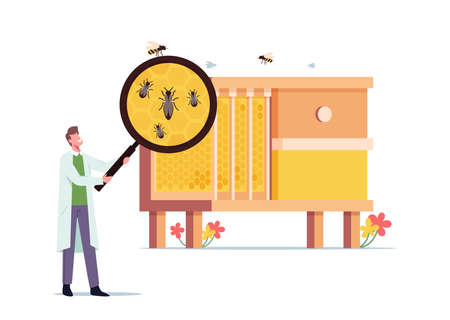 Apiary, Biology Science Concept. Tiny Scientist with Huge Magnifying Glass Learning Bees at Huge Beehive with Queen