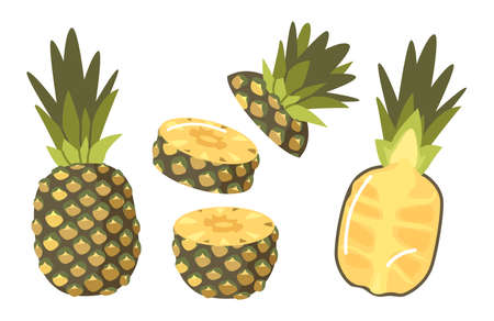 Set of Pineapples, Tropical Plant Whole, Half and Sliced Natural Exotic Fruit with Juicy Pulp. Healthy Organic Product