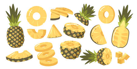 Set of Pineapples, Ripe Healthy Organic Product Design Elements, Fresh Tropical Plant. Whole, Half and Sliced Fruits