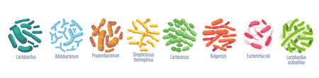 Probiotic Bacteria Lactobacillus, Bulgaricus, Propionbacterium. Lactococcus, Streptococcus Thermofillus, Lactobacillus