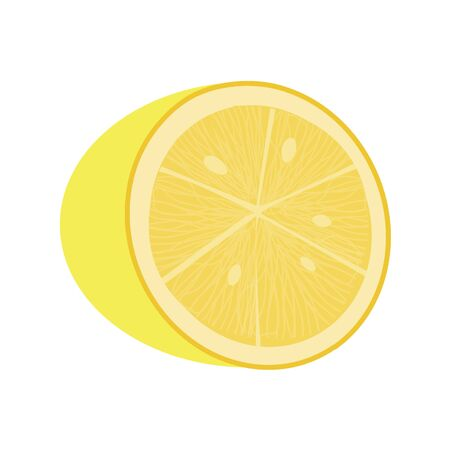 Fresh lemon fruit on white background. Vector illustration in trendy flat style. EPS 10.