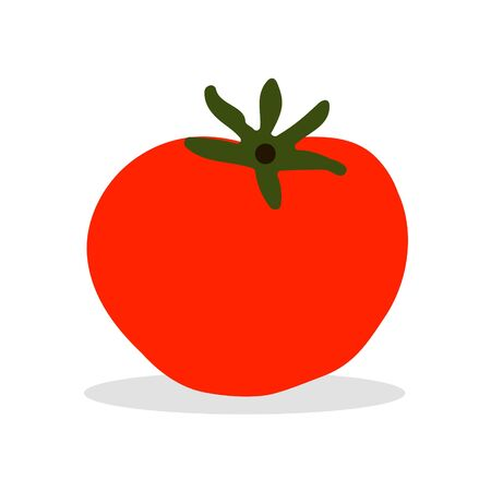 Red tomato on white background. Vegetarian food. Vector illustration in trendy flat style. ESP 10.