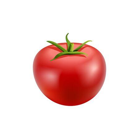 Red tomato on white background. Stock Illustration Ilustração