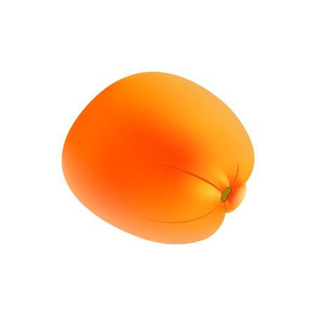 Fresh ripe orange on white background. Stock Illustration Ilustração