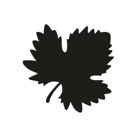 Grape Wine Leave silhouette on white background. Vector illustration.