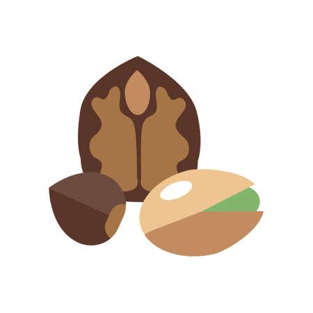Set of walnuts, hazelnuts and pistachios on white background. Different nuts. Vector Illustration. Ilustração