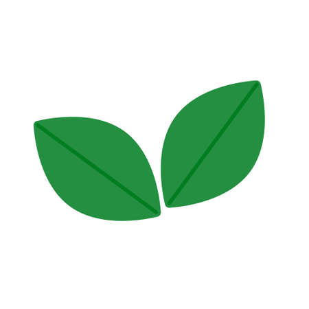 Two green leaves. From small bush. Eco symbol