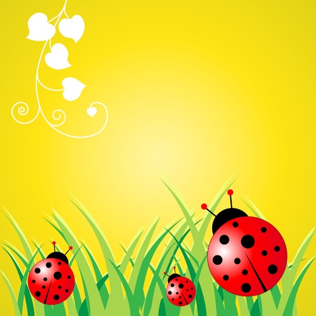 Cartoon flower with ladybird isolated on a yellow background.