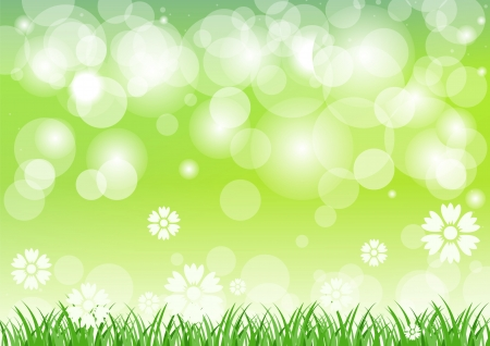 Green grass and flowers with green background. Stock Vector - 13632896