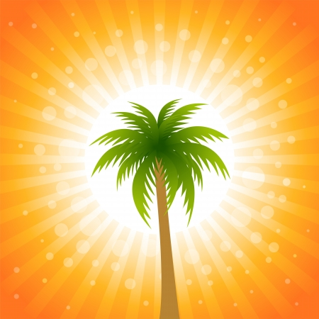 Tropical palm tree, illustration Stock Vector - 13639267