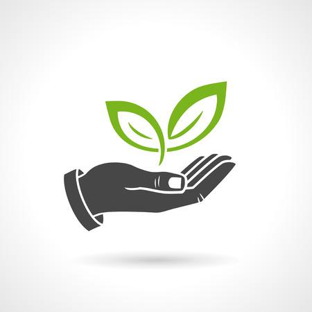 enviromental: Hand holding green leaves, enviromental ecology concept, vector symbol. Illustration