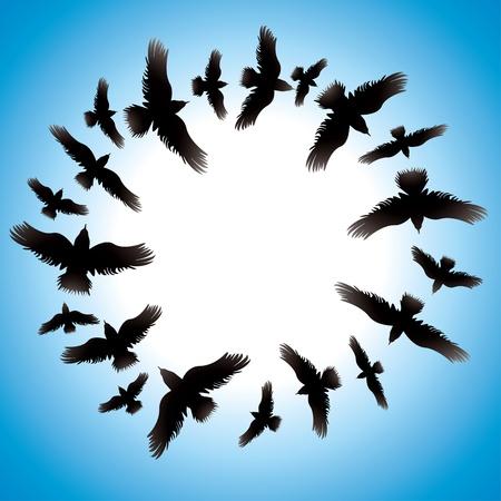 bandada pajaros: Vector de diseño con las aves Vectores