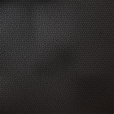 snake skin pattern: Leather texture