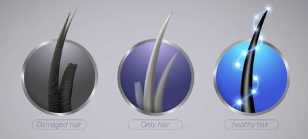 Close up of strong hair condition Damaged and gray hair Realistic icon style. Illustration