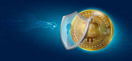 Bitcoin Cryptocurrency Coin Private Key Lock.