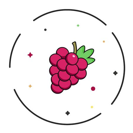Red, pink, purple wine bunch of grapes icon