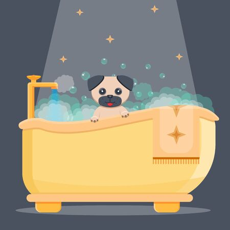 Retro vintage luxury night home bath bathroom with foam bubbles open water tap, hanging terry towel. Cute smile pug dog puppy pet grooming concept. Modern flat vector illustration. Isolated on black Archivio Fotografico - 128546971